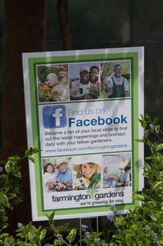 556 Best Nursery display ideas images | Vivarium, Garden ...