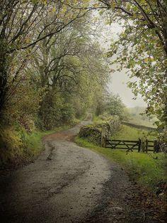 bonitavista: Cumbria, England  photo via johanna