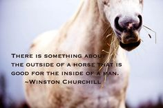 There is something about the outside of a horse that's good for the inside of a man.  ~ Winston Churchill Truer words have never been spoken.