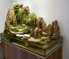 Home Aquarium Ideas: The Aquarium Buyers Guide Paludarium with Large Rock Feature Aquascaping, Aquarium Design, Aquarium Terrarium, Aquarium Fish, Reptile Terrarium, Vivarium, Conception Aquarium, Aquariums, Tide Pools