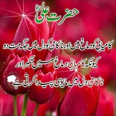 Kamyabi, Hazrate Ali, Aqwal e Zareen, Urdu Quotes With Images, Inspirational Quotes In Urdu, Islamic Love Quotes, Muslim Quotes, Religious Quotes, Hazrat Ali Sayings, Imam Ali Quotes, Allah Quotes, Islamic Phrases