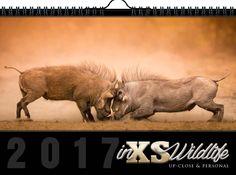 © 2017 Wildlife Wall Calendar (A3) - All photos & design by inXS Wildlife