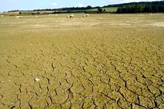 Hollowell reservoir in Northamptonshire, September 2014, after the driest first 10 months since 1929.