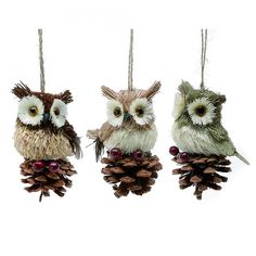 My entire Christmas tree is full of owls that look just like this, I'm not even kidding