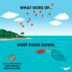 Image result for balloon releases harmful environment