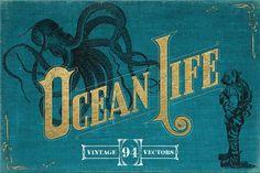 @newkoko2020 Vintage Nautical Illustrations by Mr Vintage on @creativemarket #vintage #graphic #discount #buy #quality