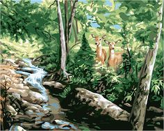 A Moments Notice (Deer/Woods/Stream) Paint by Number (20x16) (pbn21719) Plaid Paint By Number Kits