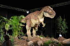 dinosaurs - Google Search Dinosaurs Alive, Dinosaur Images, Museums, Parks, Google Search, Animals, Dinosaurs, Animales, Animaux