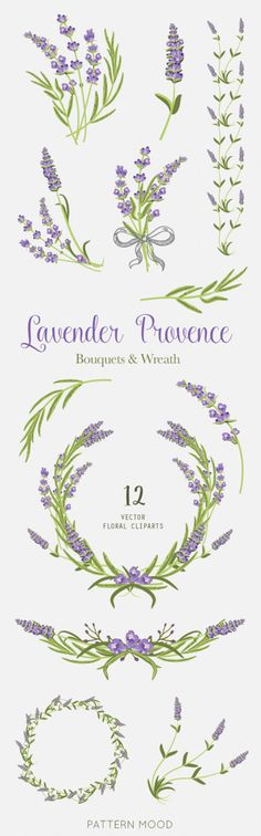 Lavender Provence Elements clipart floral wedding invite