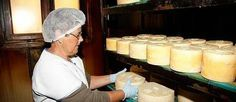 Cifra histórica para el queso Gamonéu