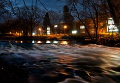 The banks of the Red Cedar River, Michigan State University, East Lansing, MI