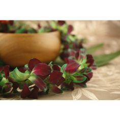 Tinted Orchid Lei Green