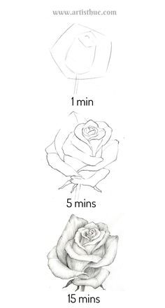 Flower Art Drawing, Flower Drawing Tutorials, Art Tutorials, Roses Drawing Tutorial, Flower Drawings, Rose Tutorial, Pencil Art Drawings, Art Drawings Sketches, Easy Drawings