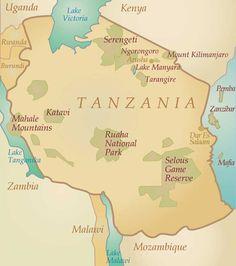 Safari en Tanzanie - le N'goro n'goro et les big five