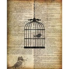 PTM Images Bird Cage Graphic Art