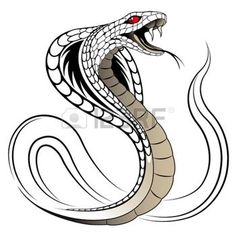 tattoo design pattern: Vector Snake, Cobra Illustration
