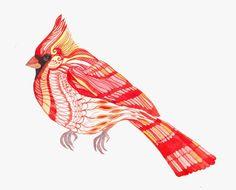 Original watercolor 8x10 LACE cardinal by TEVA