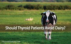 There are health benefits of drinking raw milk. When I start a thyroid protocol I usually suggest they avoid it to start. Here's why...