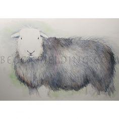 One of my Herdwick sheep watercolour paintings www.beccafielding.com Watercolor Paintings, Watercolours, Lake District, Sheep, Horses, Lambs, Ivy, Wisdom, Animals