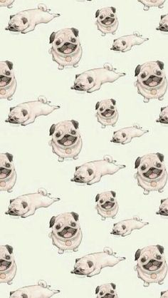 wallpapers pugs dogs puppies pattern tap see more tribal and colorful amp texture iphone Wallpaper Pug, Iphone 5 Wallpaper, Tumblr Wallpaper, Screen Wallpaper, Wallpaper Backgrounds, Iphone Backgrounds, Image Clipart, Art Clipart, Pugs
