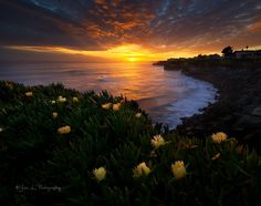 A typical Santa Cruz Sunset @ Northern California.