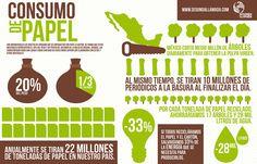 Infografía: Consumo de papel