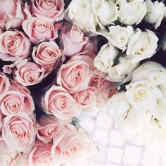 pink and white roses(Cool Photography Flowers) My Flower, Pink Flowers, Beautiful Flowers, Flowers Pics, Flower Ideas, Summer Flowers, Cut Flowers, Simply Beautiful, Colorful Flowers