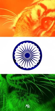 Newest Indian Flag Most Popular And Famous Wallpaper Collection. On The Occasion Republic Day And Independence Day. Desktop Background Pictures, Black Background Wallpaper, Background Images For Editing, New Wallpaper, Indian Flag Wallpaper, Indian Army Wallpapers, Republic Day Images Pictures, Tiranga Flag, National Flag India
