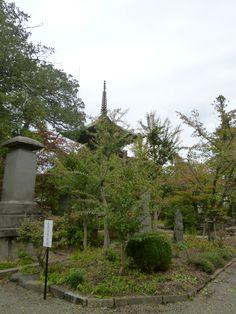 """""""Shinano-Kokubunji"""" (Tempio), Ueda Nagano Japan (Ottobre)"""