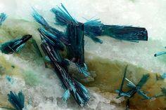 Elongated tabular blue crystals of clinoclase.