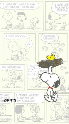 Snoopy and Woodstock Snoopy Wallpaper, K Wallpaper, Colorful Wallpaper, Snoopy Love, Charlie Brown And Snoopy, Snoopy And Woodstock, Peanuts Cartoon, Peanuts Snoopy, Cartoon Wall
