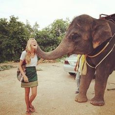 touch an elephant, pure happiness :) who doesn't love elephants