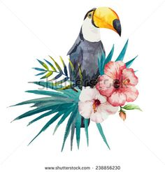 toucan, hibiscus, watercolor - stock vector