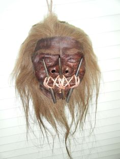Shrunken Head (Tsantsa) - Wooly Haired - Click to Enlarge