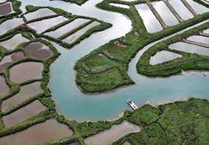 Le Bassin de #Marennes, marais du sud-est de l'île d'Oléron