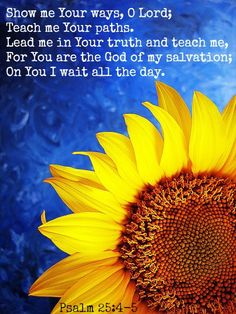 Psalm 25:4-5    Show me Your way Lord!