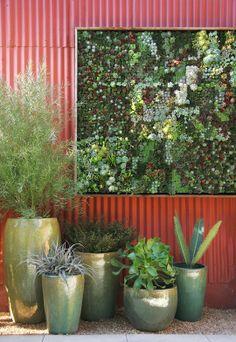 DIY Vertical Succulent Garden Panels by Flora Grubb