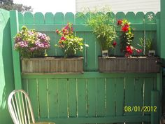 painted fences - Google Search