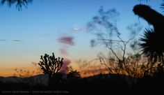 The February 2015 new Moon over Antelope Valley, California. (Credit and copyright: Gavin Heffernan)