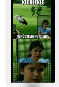 Very Funny Memes, Bad Memes, Wtf Funny, Funny Cute, Funny Images, Funny Pictures, Funny Lyrics, Hahaha Hahaha, Polish Memes