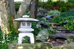 Buffalonians love the local Japanese gardens in spring time! These stone steps lead to a tranquil spot beneath a flowing willow beside Mirror Lake. Trails connect the gardens to the rest of Delaware Park.