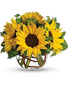 Sunny Sunflowers - Teleflora
