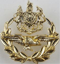 Master Aircrew (Royal Arms Above Eagle In Laurels) FR - X Air Force Rank Badge for sale Queen Elizabeth Crown, Queen Crown, Military Insignia, Royal Marines, Royal Air Force, Badges, Eagle, Arms, British
