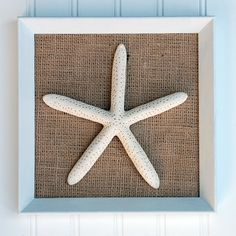 Starfish on burlap