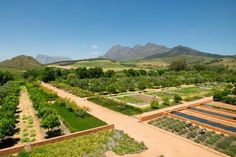 I Want to Go To There: Babylonstoren | elements of style | Bloglovin'