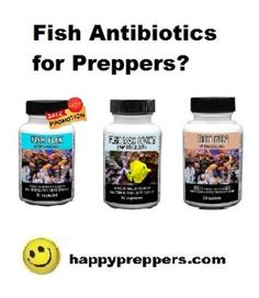 1000 images about preppers on pinterest survival for Fish antibiotics for humans