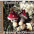 Serial Crocheteuse 139 : couleurs d'automne, caramels ou chocolat