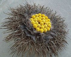 Yellow billy buttons (craspedia)