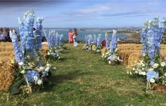 Another shot of the beautiful blue Delphinium's, Cornish Herbs, Daisies, Blue Hydrangeas, white Lisianthus Rustic arrangements lining their ceremony.