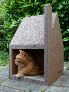 Chat modern house successfully replaced cardboard cat tree Diy Cat Toys, Cats Diy, Diy Jouet Pour Chat, Niche Chat, Cardboard Cat Scratcher, Cat House Diy, Animal Room, Cat Room, Cat Condo